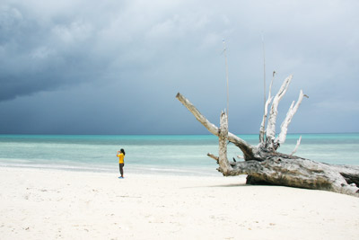 Beach in Havelock Andaman Islands India